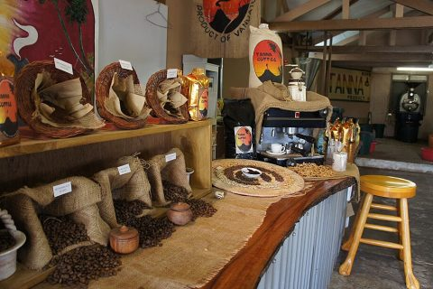 Tanna Coffee Factory Tours
